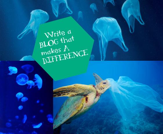 LI TurtleBlog