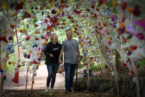 flower arch Meg Benson